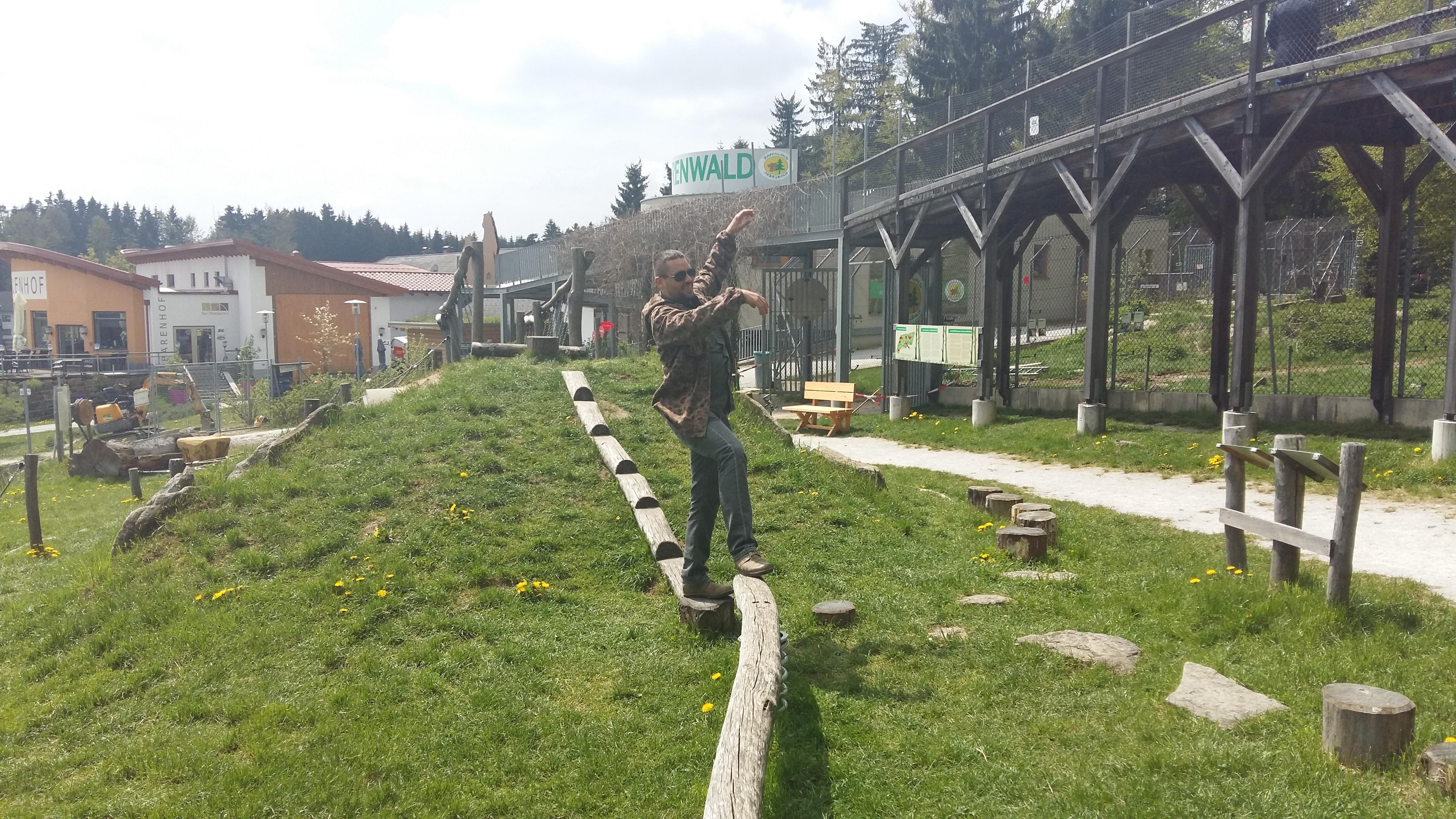 Bärenpark Arbesbach 2016